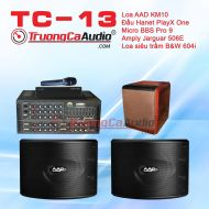 Dàn karaoke gia đình TC-13