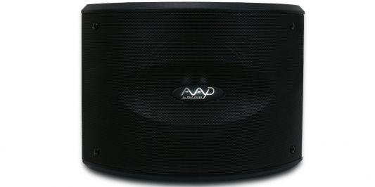Loa AAD K10