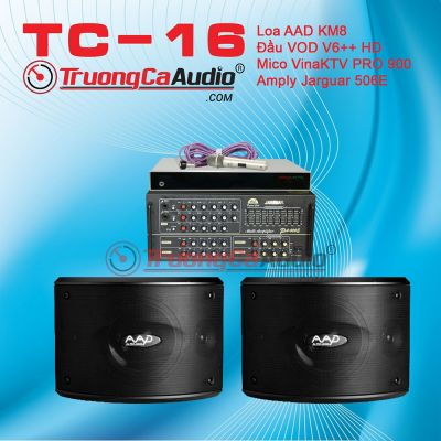 Dàn karaoke gia đình TC – 16